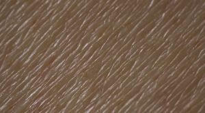 This is either an extreme close-up of the skin of one of the characters or a Windows 95 wallpaper option.